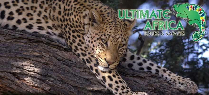 South Africa tours - Ultimate Africa Tours & Safaris - Tour Operator - Country wide :: Travel Services